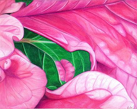 Passion by Ekta Gupta