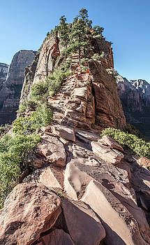Angels Landing the Chains 2 by John McGraw