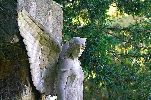 Angel's Wing by Marc Huebner