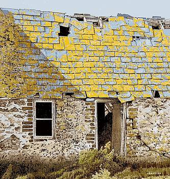 Anglesey farm by Alwyn Dempster Jones