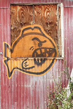 Guy Shultz - Angry Fish