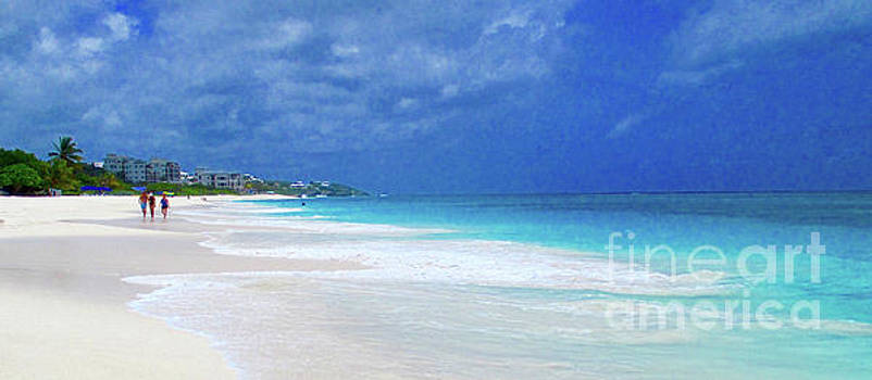Shoal Beach Anguilla by Jerome Stumphauzer