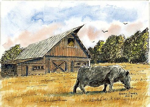Angus Country by Barry Jones