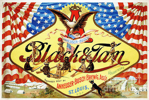 Anheuser Busch Black and Tan Poster by Vintage Treasure