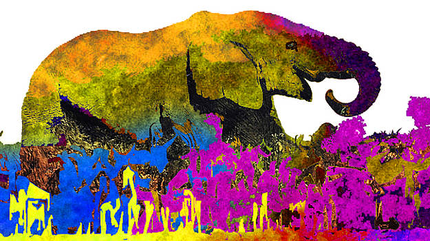 Animal Abstract by Stephen Humphries