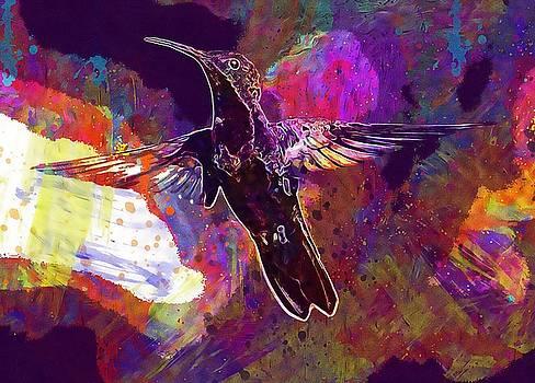 Animal Avian Bird Feathers Flight  by PixBreak Art