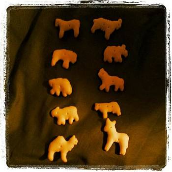 Animal Cracker S....you Call These by Heather Tyndall