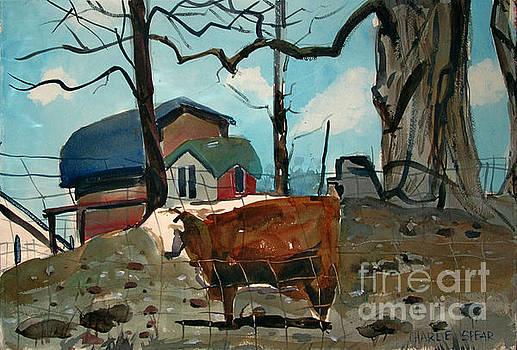 Animal Farm by Charlie Spear