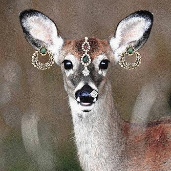 Sumit Mehndiratta - Animal royalty 10