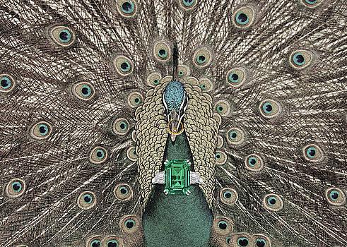 Sumit Mehndiratta - Animal Royalty 8