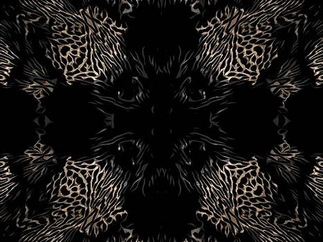 Animal by Stephanie Espinosa