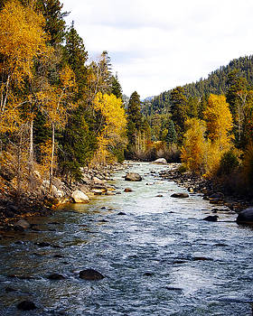 Kurt Van Wagner - Animas River