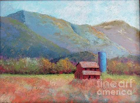 Animas Valley, Blue Silo by Rosemary Juskevich