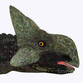 Ankylosaurus Dinosaur Head by Corey Ford
