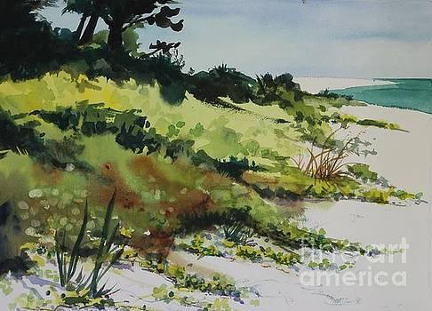 Anna Marie Island by Elizabeth Carr