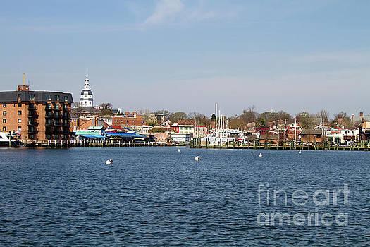 Annapolis City Skyline by Steven Frame