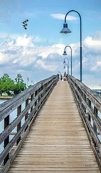 Annapolis Naval Academy Pedestrian Bridge by Brian Wallace