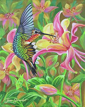 Anna's Hummingbird 2 by Jane Girardot