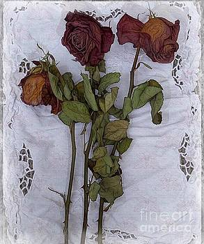 Anniversary Roses by Alexis Rotella