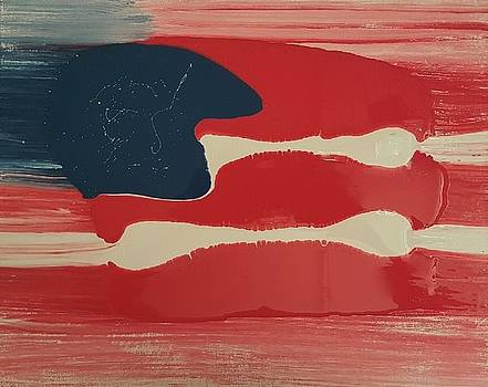 Another Flag by Gyula Julian Lovas