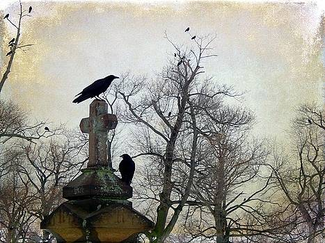 Gothicrow Images - Another Graveyard Crow Day