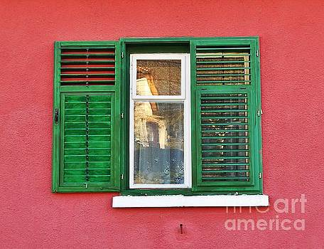 Another Green Shutter by Erika H