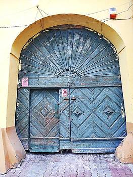 Another Old Door  by Erika H
