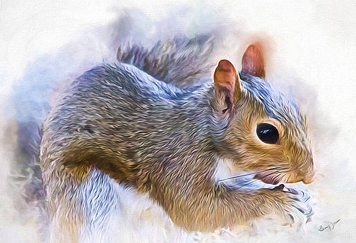 Another Peanut Please - Squirrel - Nature by Barry Jones