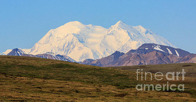 Another View of Mount McKinley by Robert Pilkington