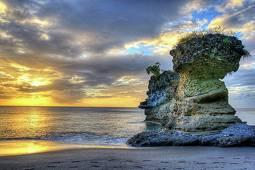 Anse Mamin Rock Formation at Sunset Saint Lucia Caribbean Sunset by Toby McGuire