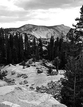 Ansel's Yosemite by Jennifer Ferrier