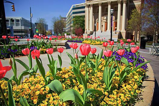 Jill Lang - Ansley Park Atlanta