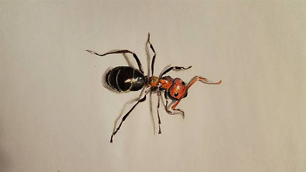 Ant by Gilca Rivera