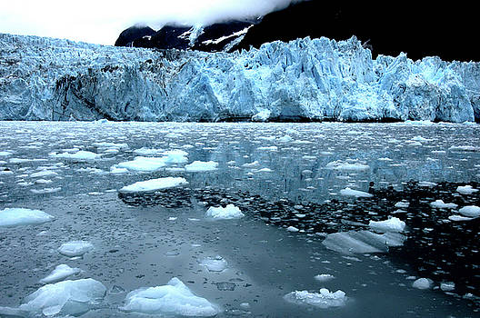 Antarctic Ice Flow by Bill Williams