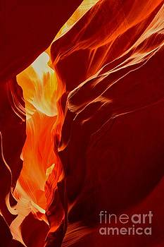 Adam Jewell - Antelope Textures And Flames