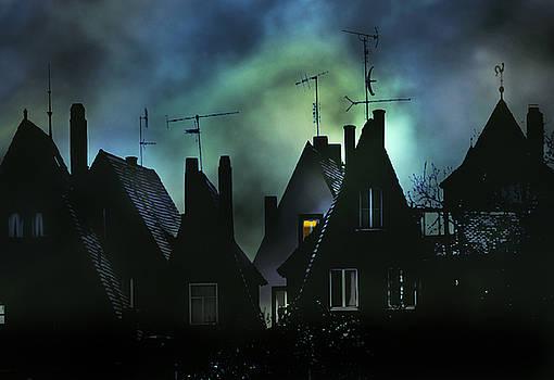 Antennae by Barbara D Richards
