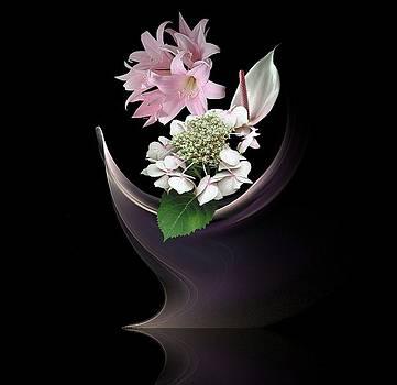 Anthurium by Diane McCool-Babineau