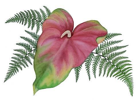 DK Nagano - Anthurium n Ferns