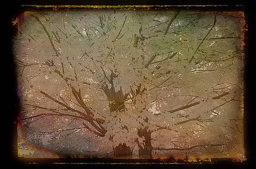 Aimee L Maher ALM GALLERY - Antique Amber Golden Tree