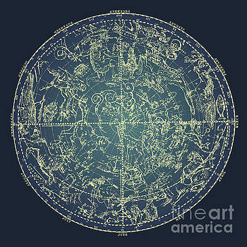Tina Lavoie - Antique Constellation of Northern Stars 19th Century Astronomy