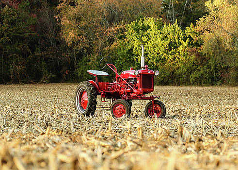 Antique Farm-All in the cornfield by Seth Solesbee