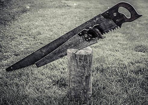 Chris Bordeleau - Antique Hand Saws in a stump - BW
