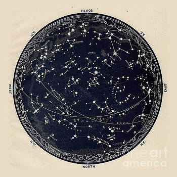 Tina Lavoie - Antique Map of the Night Sky, 19th century astronomy