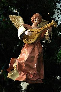 Edward Sobuta - Antique Ornament 13