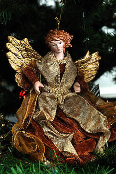 Edward Sobuta - Antique Ornament 5