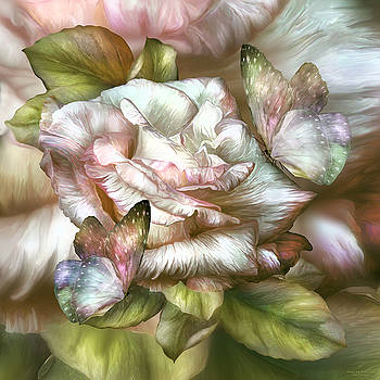 Antique Rose And Butterflies by Carol Cavalaris