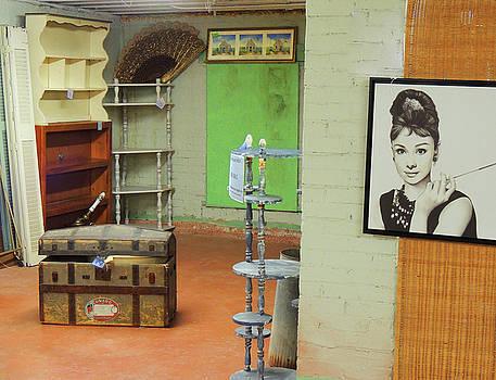 Antique Store Still Life by Krin Van Tatenhove