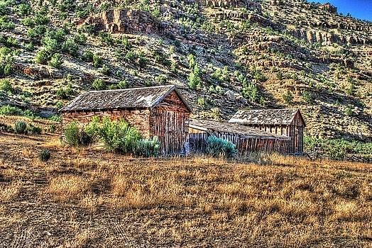 Any one home by John Johnson