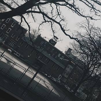 Anybody Missing School Yet? by Imani Singletary