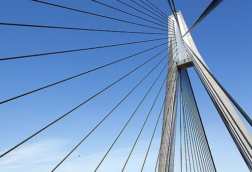 Ramunas Bruzas - Anzac Bridge